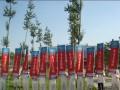2010年全国药品交易会(北京) (7图)