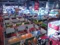 健康产业领袖峰会之第73届全国药品交易会